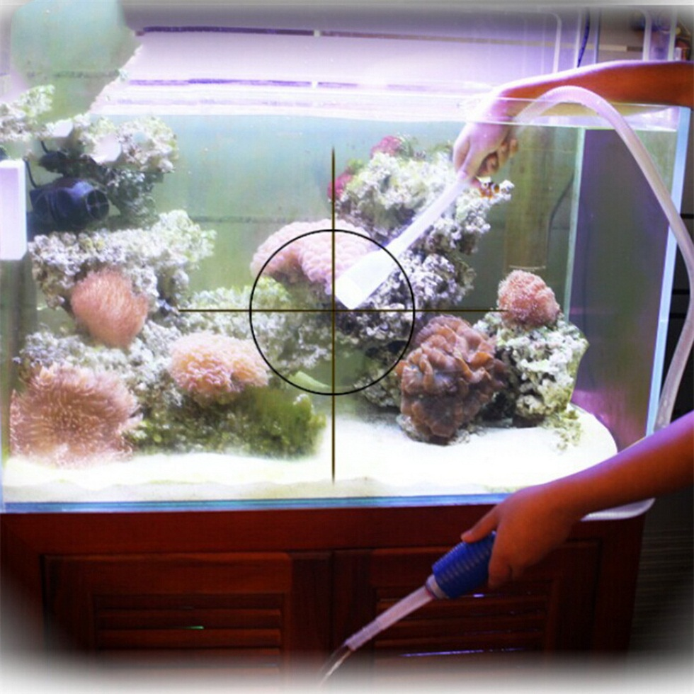 how to keep fish water clean